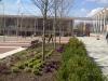 Nottingham University Campus 3
